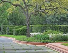Driveways and Paving Professional